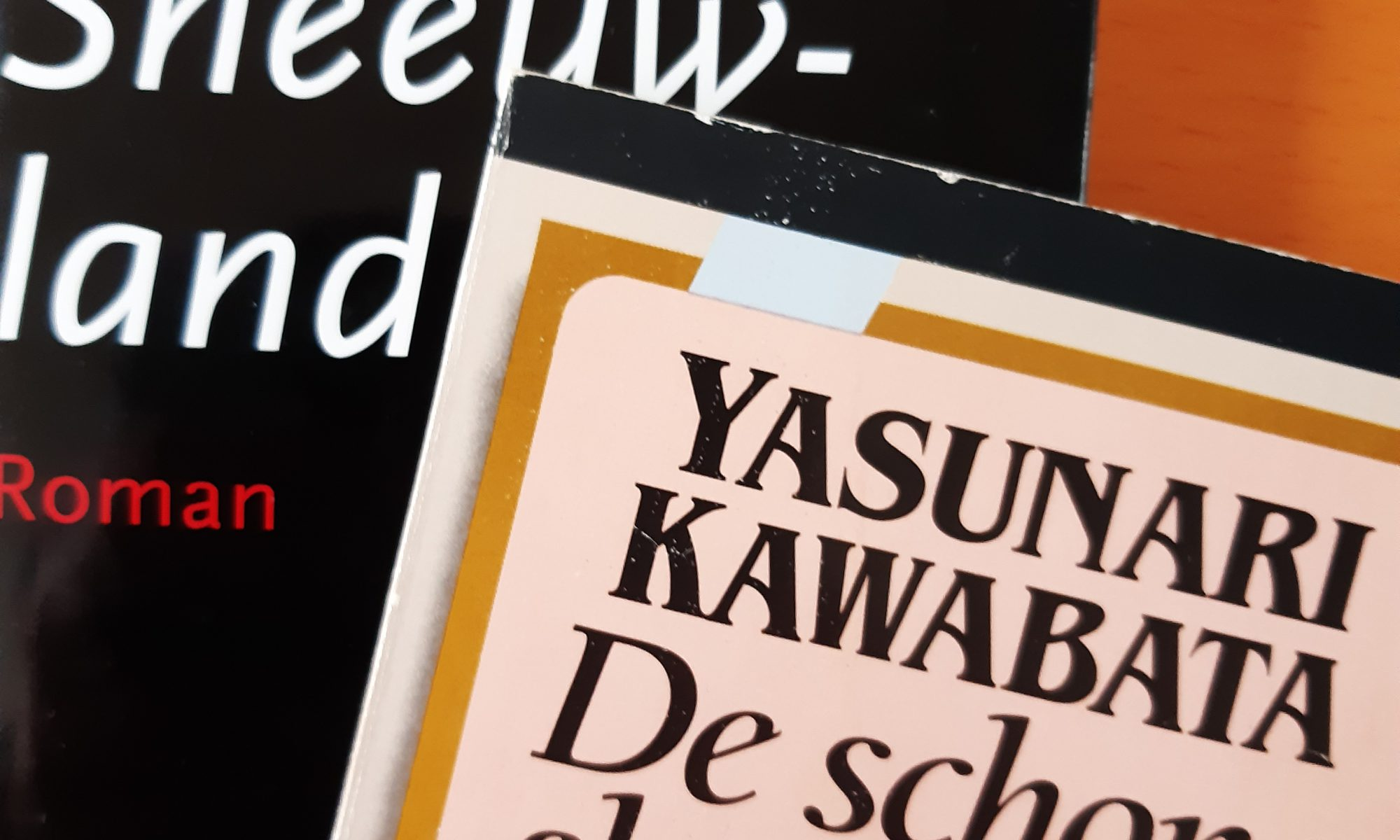 Yasunari Kawabata: De schone slaapsters en Sneeuwland